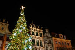 The 3-story tall, densely decorated and beautifully illuminated Christmas tree.