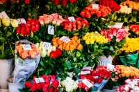 Fresh flowers available in December