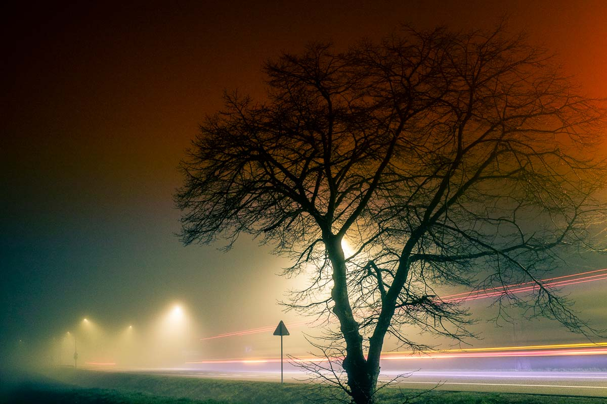 Fog and road, Bolesławice