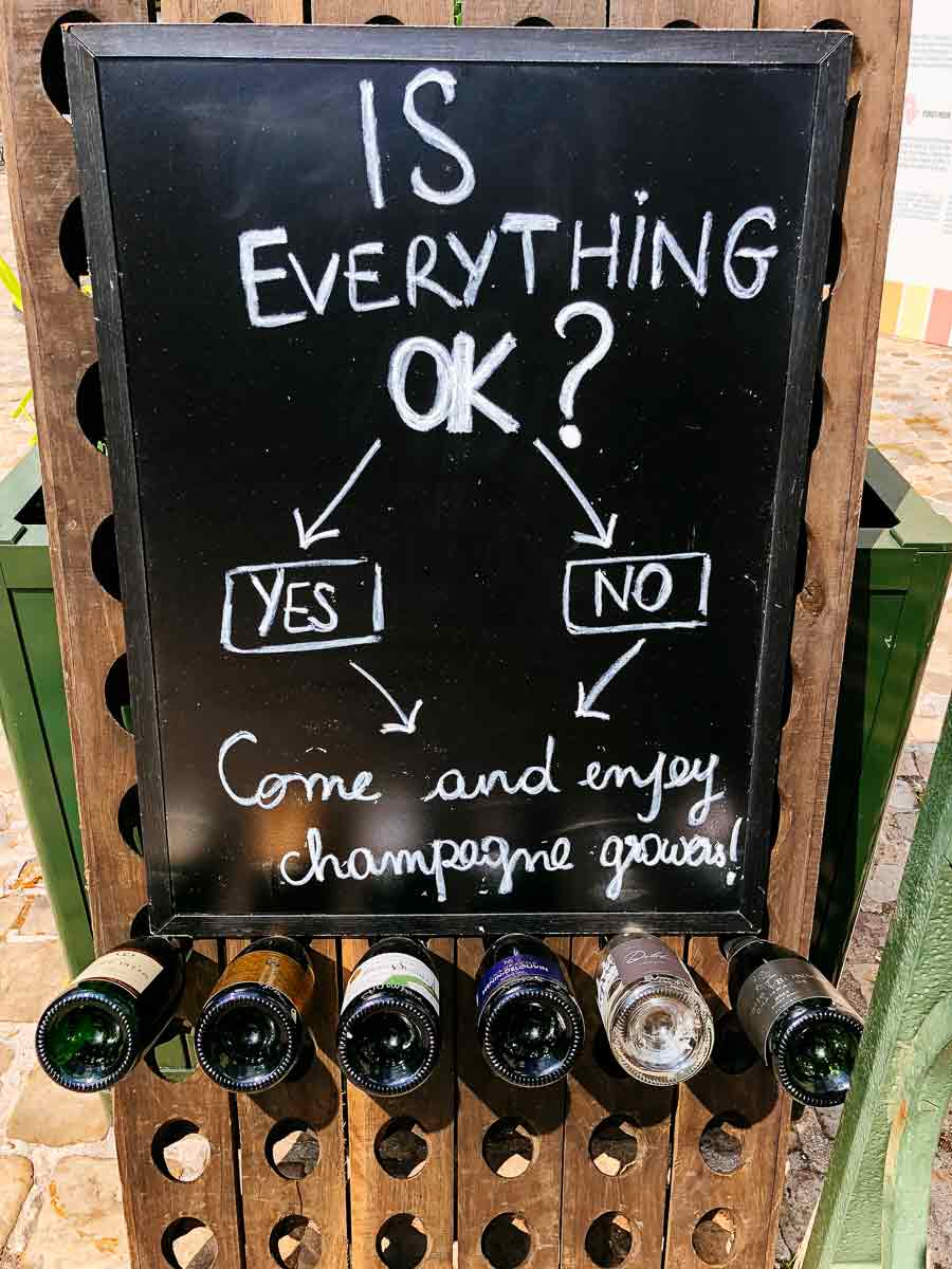 1780-Champagne-makes-everything-OK