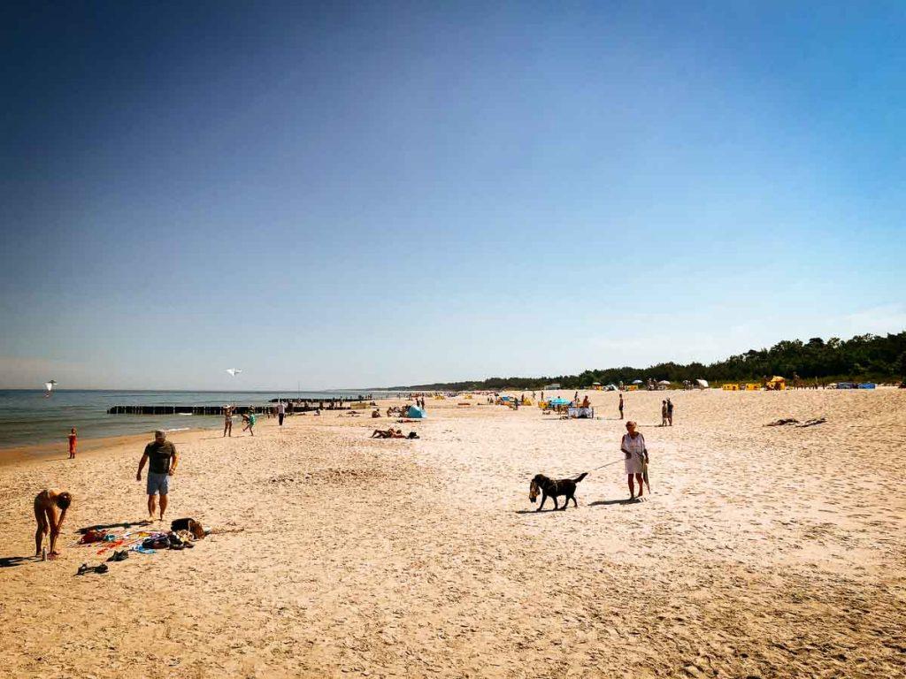beach with dog Łeba