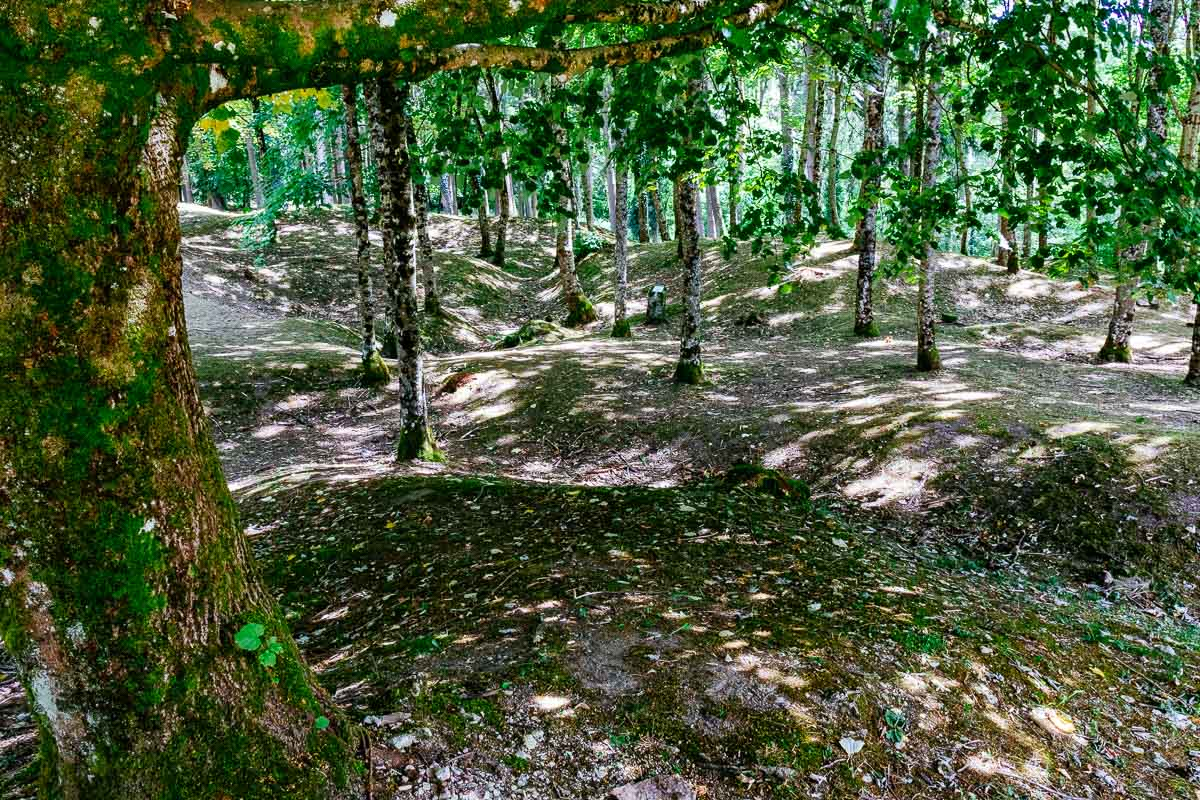 scarred landscape Fleury devant Douaumont