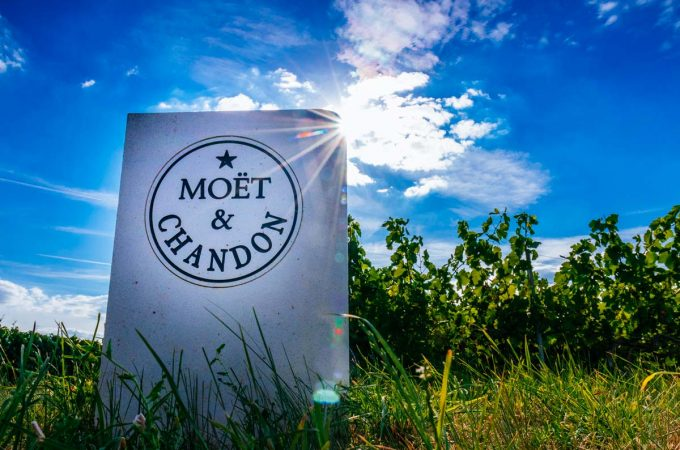 Moët-Chandon-vineyard-marker