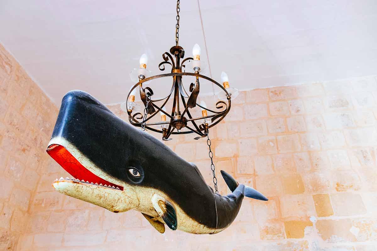 whale-valletta-apartment-malta-2018